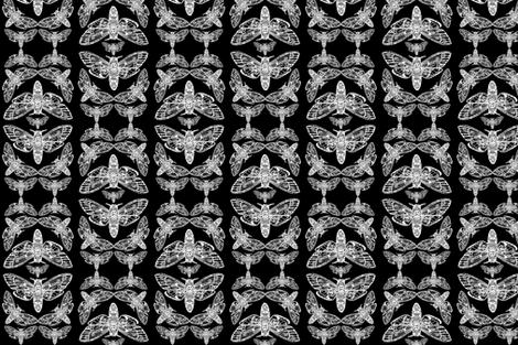 Death Head Moth Tangle Damask fabric by mayhemhere on Spoonflower - custom fabric