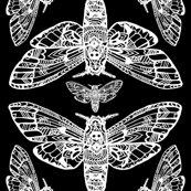 Dh_moth_pattern_shop_thumb