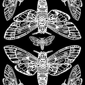 Death Head Moth Tangle Damask