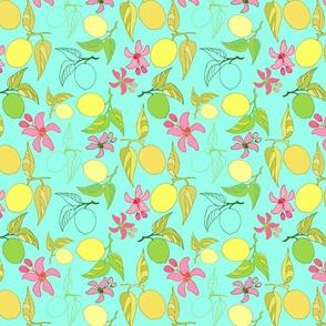 Summertime Lemons