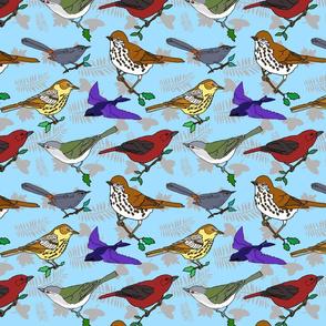 Virginia_migratory_birds