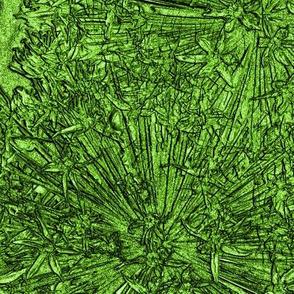 Green Alliums - Giant