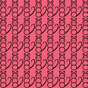 Raspberry  Katzen