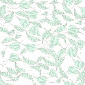 Parisian Green Foliage, Soft Mint Green Leaves on Crisp White Background