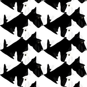 Tessellating Black and White Scottish Terriers