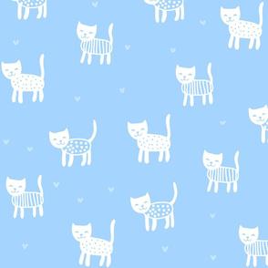 Light Blue Kittens
