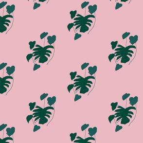 green_pinkSPF-01