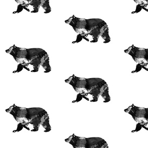 Watercolour Bear