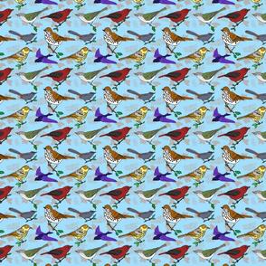 Virginia_migratory_birds_4x4