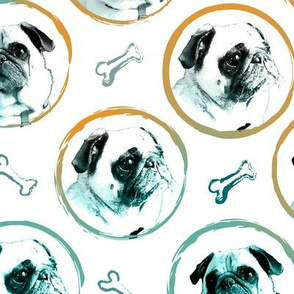 pug portrait dog bone