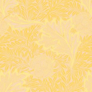 Morris Oak Gold