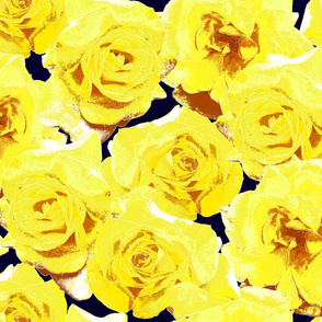 Yellow_Roses_on_dk_navy