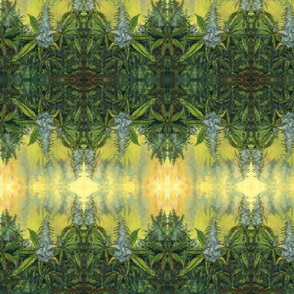 """Kush Craze""  Fabric"