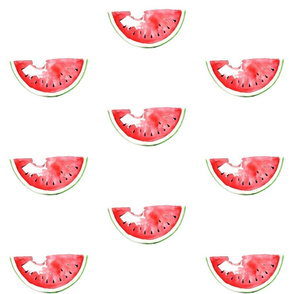 Watermelon watercolor summer illustration