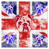 British Bulldog Spirit