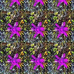 Meadow Flower Fushia