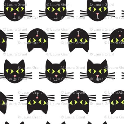 cat faces 1