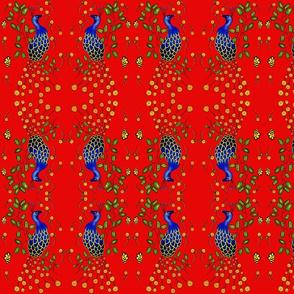 Pfau  Pretty  Peacock red