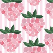 Berry_raspebbery1_shop_thumb