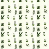 Rrlove_cactus_shop_thumb
