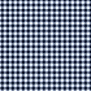 1:6 Gingham 1/4-Inch-Navy Blue And White