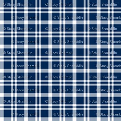 1:6 Plaid 1-White On Navy Blue