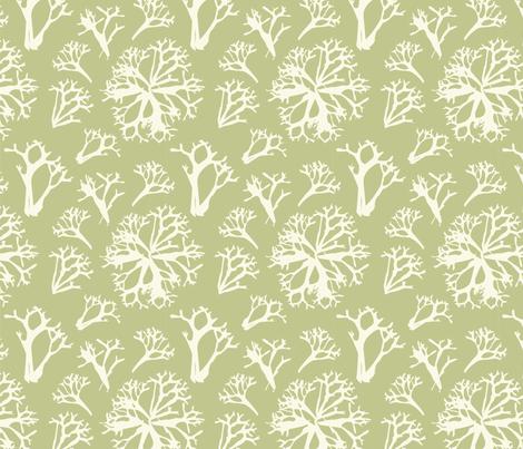 lichen fabric by krista_power on Spoonflower - custom fabric