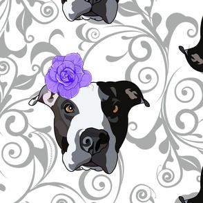 Purple Flower Dog