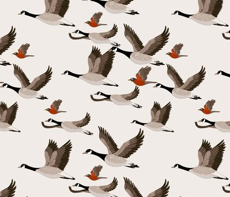 Gueth_migratory_birds_shop_preview