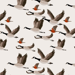 gueth_migratory_birds