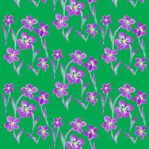 Dainty Meadow Flowers on Emerald Green Fields