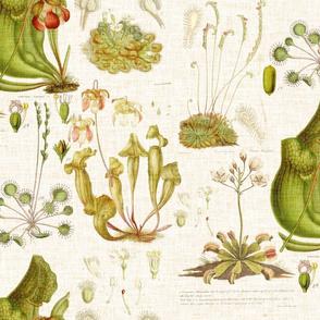 Carnivorous Plants - linen