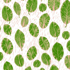 big leaves + bark - green/blush