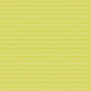 Dashed Stripe in Celery Green