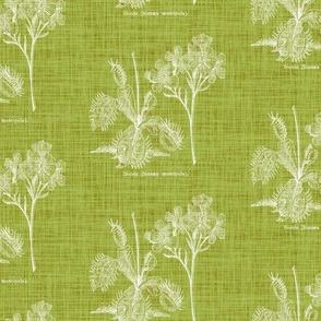 Flytrap linen - green