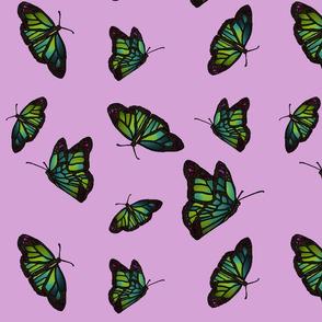 Butterflies on mauve background