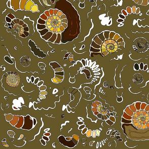 Limestone ammonites with calcite vein in khaki