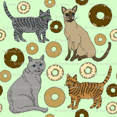cats_and_donuts_11