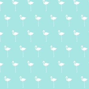 Field of Flamingos in teal