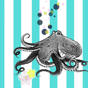 Octopus Stripes BBP