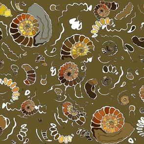 Limestone extra ammonites in khaki MEDIUM