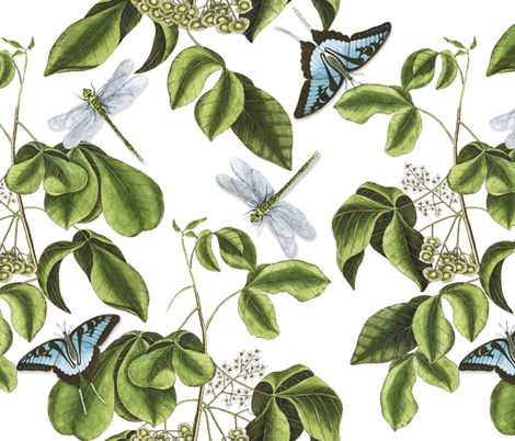 Butterflies and Dragonflies fabric by willowlanetextiles on Spoonflower - custom fabric