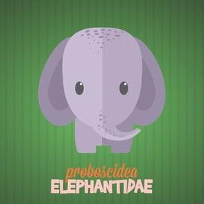 Latin Elephant