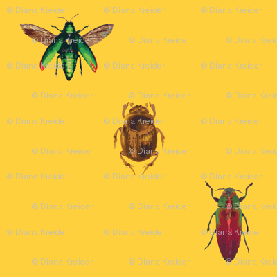 Insect_pattern