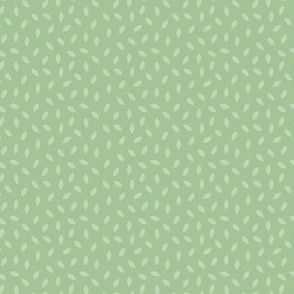 Little leaf mint