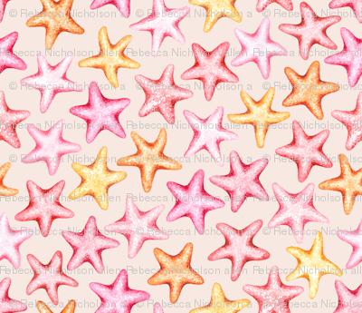 Seastars on the Sea Shore