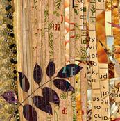Borrego Collage