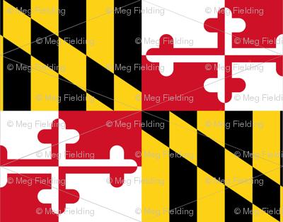Maryland Flag Pennants