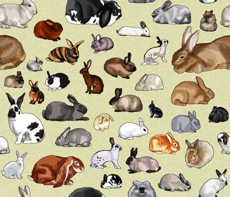Breeds of Rabbits (no text) fabric by aalk on Spoonflower - custom fabric