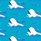 Beluga_pattern_shop_thumb